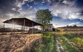 Сельская местность, поле, дом, сено