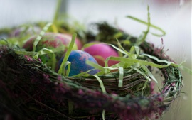 Easter eggs, basket, holiday