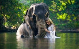 Aperçu fond d'écran Éléphant et fille dans l'eau