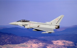 Preview wallpaper Eurofighter Typhoon multipurpose fighter flight