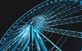 Ferris wheel illumination, night view
