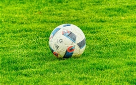 Preview wallpaper Football, grass, sport