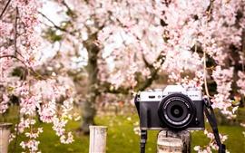 미리보기 배경 화면 Fujifilm X-T10 디지털 카메라