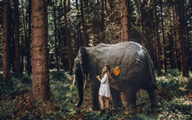 Preview wallpaper Girl and elephant in the forest