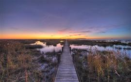 Grama, ponte de madeira, água, por do sol
