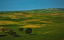Campos verdes, colinas, paisaje de naturaleza hermosa