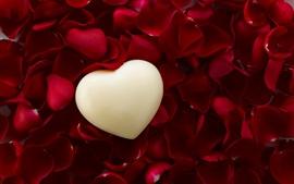 Coração de amor, pétalas de rosa vermelhas