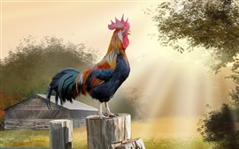 Preview wallpaper Morning, rooster, trees, hut, art picture