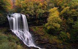 미리보기 배경 화면 노스 캐롤라이나, 폭포, 가을, 나무, 미국