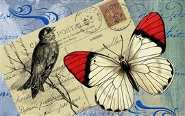 Preview wallpaper Postcard, butterfly, bird