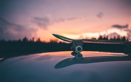 Preview wallpaper Skateboard, sunset