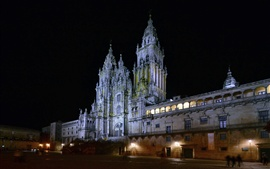 Preview wallpaper Spain, Cathedral, night, buildings, lights