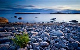 Piedras, hierba, lago, anochecer