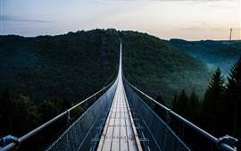 Preview wallpaper Suspension bridge, path, mountain, trees