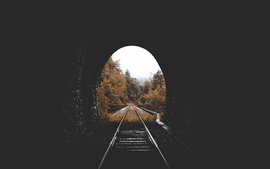 Preview wallpaper Tunnel, railway, trees, autumn