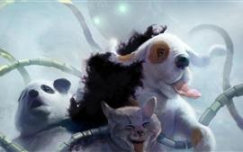 Художественные акварели, панда, овцы, кошка