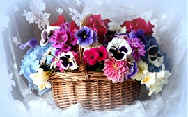 Preview wallpaper Basket, colorful flowers