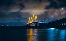 Preview wallpaper Baytown, Texas, USA, bridge, illumination, river, night