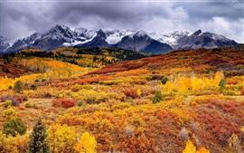 Hermoso paisaje de otoño, bosque, montañas, nubes