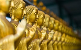 Preview wallpaper Buddha statues, gold color