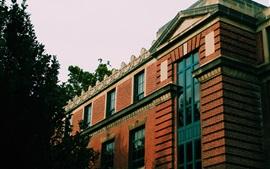 Edificio, casa, ventanas, pared
