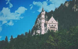 Preview wallpaper Castle, trees, mountain, blue sky, clouds