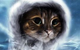 Chaton mignon, vue de face, aquarelles