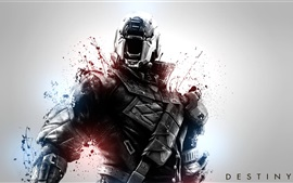 Preview wallpaper Destiny, soldier, blood, games HD
