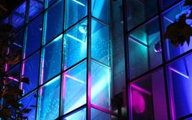 Ventana de cristal, luz de neón, noche