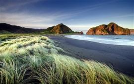 Трава, пляж, море, горы, сумерки