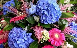 Preview wallpaper Hydrangea and gerbera flowers