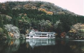 金鱗湖、湖、公園、家、木、日本