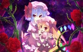 Aperçu fond d'écran Lovely deux filles anime