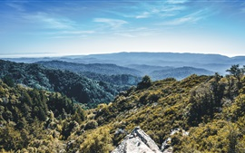 Preview wallpaper Mountains, forest, trees, top view, sky
