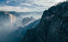 Montagnes, rocher, falaise, arbres, brouillard, matin