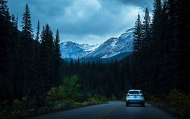 Preview wallpaper Mountains, trees, road, car, dusk