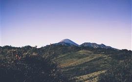 Mountains, trees, slope, sky, dusk