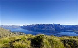 Nova Zelândia, lago, montanhas, grama, paisagem natural