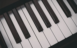 Preview wallpaper Piano keys, musical theme