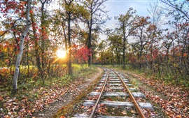 Preview wallpaper Railway, track, trees, sunset