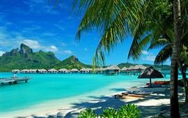 Preview wallpaper Resort, huts, sea, palm trees, Bora Bora island, French