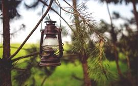 Ретро-фонарь, лампа, веточки