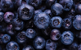 Preview wallpaper Ripe blueberries, fruit macro photography