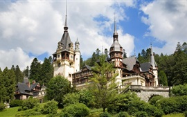 Preview wallpaper Romania, Peles Castle