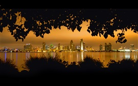 Preview wallpaper San Diego, night, trees, leaves, river, skyscrapers, lights, USA