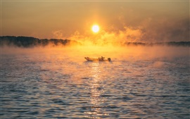Preview wallpaper Sea, boat, fog, morning, sunrise