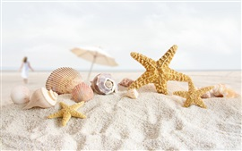 Preview wallpaper Seashells, starfish, sands