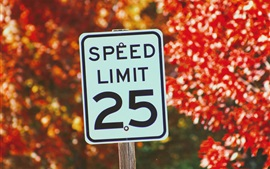 Preview wallpaper Sign of speed limit