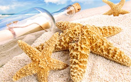 Preview wallpaper Starfish, sands, bottle