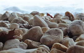 Preview wallpaper Stones close-up, sea